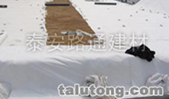 泰安垃圾填埋场调节池雷竞技APP下载毯的施工现场